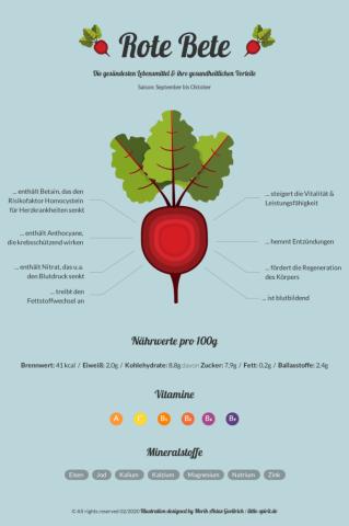 Illustration Infogarfik Rote Bete design Merih Aktas Goellrich
